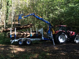 Holztransport02